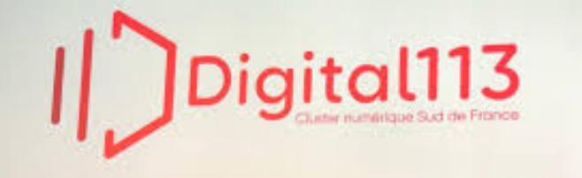 Naissance de Digital 113, le nouveau cluster des acteurs du numérique en Occitanie