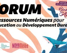 Toulouse : Forum Développement Durable