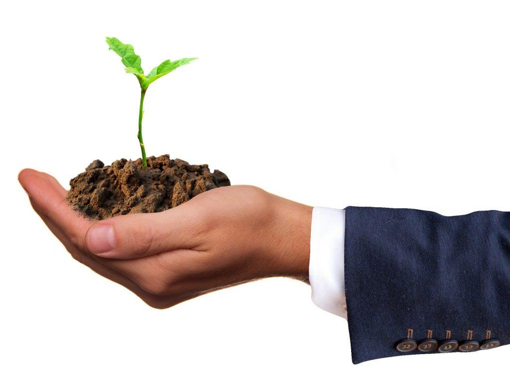 OCSEED, le nouvel outil d'investissement pour le développement des start-ups en Occitanie